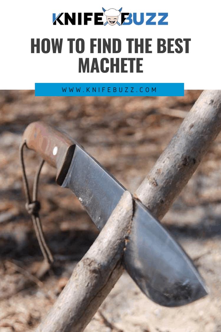 6 Best Machete